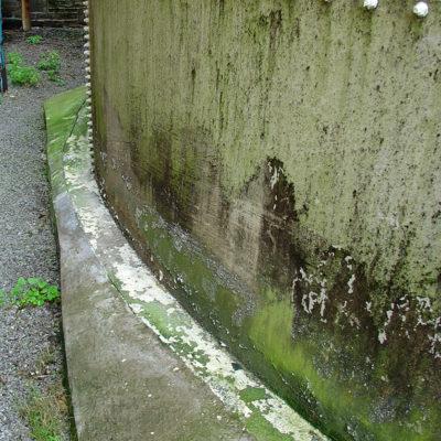 Eindringendes Wasser und Algenbildung an korrodiertem Tanksockel